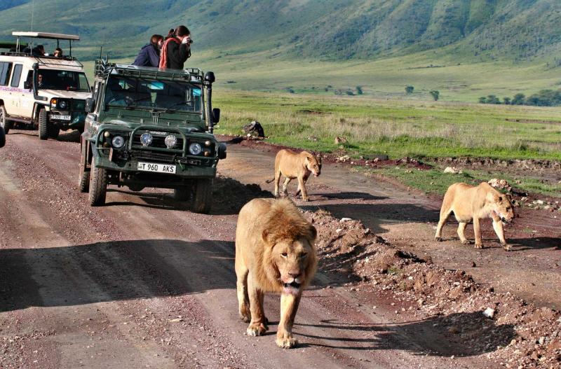 going on a family vacation in tanzania